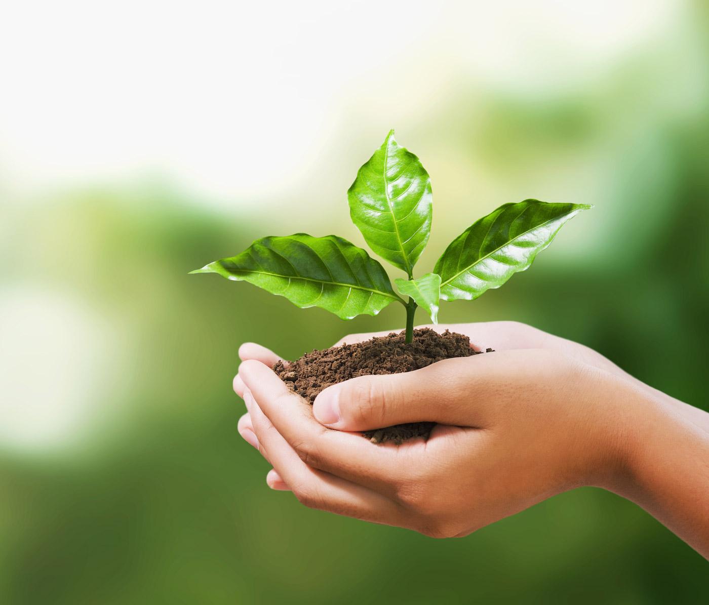 green-bio
